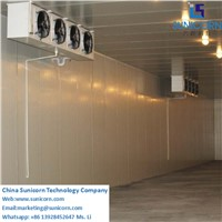 Cold Room for Fruit & Vegetable, Prefabricated Cold Room Price, Cold Storage for Potatos Onion