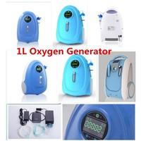 PSA 1L Oxygen Purity 90% Portable Oxygen Generator