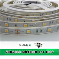High CRI95 60leds/M Silicone Glue Wateproof 5050 LED Strip with CE ROHS & ETL
