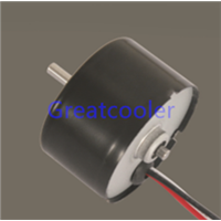 WBDM3625 36mm Brushless DC Motors