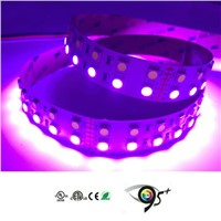 Popular RGB+W 5050 SMD LED Lights from Chinese LED Strip Supplier