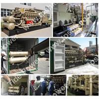 JDEC Gas Generator Set Gas Genset TPS1375G