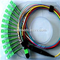 MPO-SC APC 12 Cores Patch Cord Singlemode Jumpers Cables