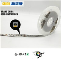 RGB+WHITE Color 60LEDS/M (4 in 1) Digital Changing Double Sided Edge-Lit Sign LED Light
