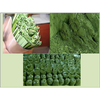Organic Pandan Leaf Powder for Herb