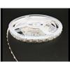 SMD 2835 3528 Color Light LED Strip IP54 IP65 Indoor Light Strip
