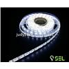 IP54 DC12V/DC24V LED Strip 5050 3528 60D LED Strip Light with Two Year Warranty