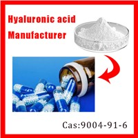 Sodium Hyaluronate Manufacturer Supply Pure Low Price Grade HA Powder
