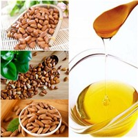 Plant Extract Pure Pine Nut Oil for Medicine Use