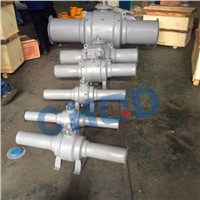 API6D Forged Stainless Steel Trunnion Mounted Ball Valve
