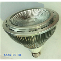 20W COB LED PAR38 Light