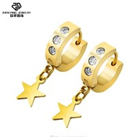 Star Crystal Stainless Hoop Earrings Small Gold Hoop Earrings Huggie Earrings Men Women Dangle Drop Earring