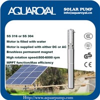 DC Solar Pumps|Permanent Magnet|DC Brushless Motor|Motor Is Filled with Water|Solar Well Pumps-4SP5/8(IT)
