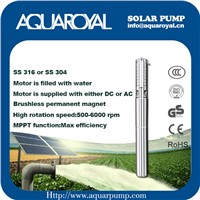 DC Solar Pumps|Permanent Magnet|DC Brushless Motor|Motor Is Filled with Water|Solar Well Pumps-4SP8/5(IT)