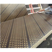 1220X2440mm Black/Brown Film Faced Plywood for Construction