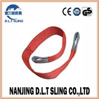 3t Polyester Duplex Webbing Sling for Lifting Belt Sling Factory with GS Standard
