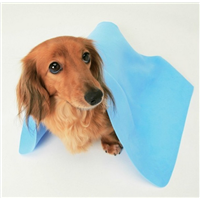 PVA Chamois Pet Towel