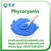 100% Natural Food Grade Phycocyanin Powder
