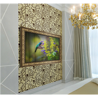Hot Selling Wooden Frame Mirror TV for Living Room