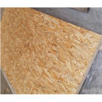 Hot Furniture/Construction/Packing Grade OSB with WBP Glue