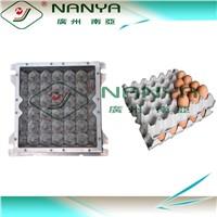 NANYA Egg Tray Mold