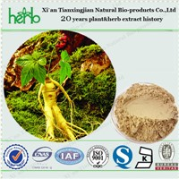 Ginseng Extract with Ginsenoside 80%, 20%