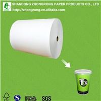 PE Paper for Paper Tea Cup