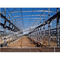 Prefabricated Industrial Single Span Steel Structural Buildings for Warehouse Turnkey Project