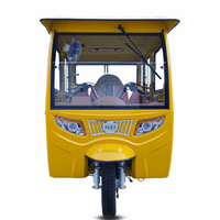 Fully Enclosed Gas Power Bajaj Passenger Tricycle