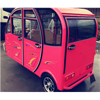 New Model of the Fully Enclosed Luxury Electric Tricycles/Cyclomotor/Motorcycles