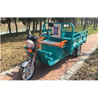 Strong Power 1000W 60V Cargo Tricycle 3 Wheel Electric Bicycle