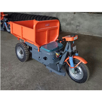 Competitive Pric for Electro-Tricycle Used for Construction
