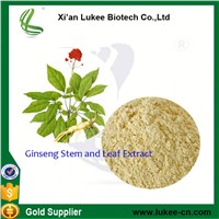 Hot Sale Low Price Panax Ginseng Extract Ginsenosides 10%~80% Powder