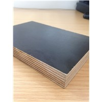 China Hot Sale & Best Prices 9mm 12mm 18mm Marine & Furniture Plywood
