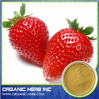 Free Sample Strawberry Extract/Strawberry Red Food Color/Strawberry Flavour Powder Extract