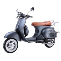 Classic Gas Moped Vespa Scooter