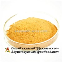 Natural Silymarin CAS No 65666-07-1 Milk Thistle Extract