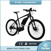 Factory Wholesale Price 250W/350W MID Drive Motor Ebike/Electric Bikes