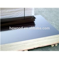 Black Film Faced Plywood Exterior Size 1220x2440x18mm Bwp Marine Plywood for Outdoors