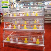 GREATFARM Chicken Cage Vertical Broiler Cages---GREAT FARM