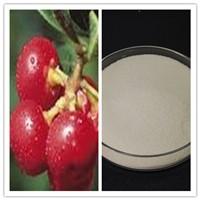 Natural Bearberry Extract Skin Care Alpha Arbutin