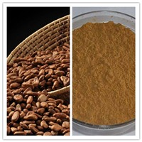 Natural Theobromine Skin Care Cocoa Extract