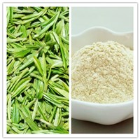 Natural Tea Saponin Tea Seed Extract