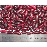High Quality Dark Red Kidney Beans from Large China Supplier