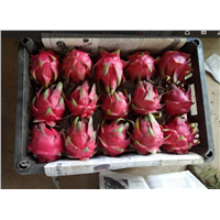 2017 Fresh Dragon Fruit from China
