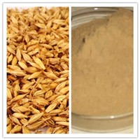 Natural High Quality Rich in Protein & Vitamin Barley Malt Extract Powder
