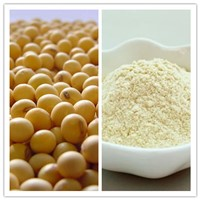 Natural Food Grade Soy Protein Isolate (CAS No. 9010-10-0)
