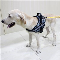 Factory Custom Comfortable Massage Pet Harness with Leash