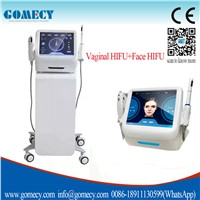 HIFU Slim Fast Weight Loss Medicine/Facial Spot Cleaner Korea Ultrasound Skin Tightening Machine
