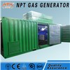 400kw Natural Gas Biogas Biomass Gas Generator